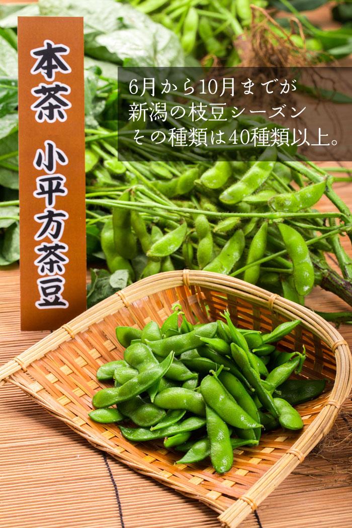 黒埼茶豆 新潟の枝豆