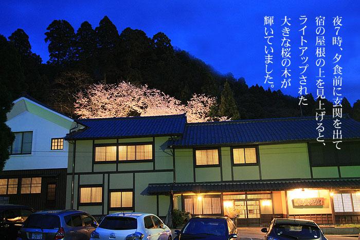 村杉薬師堂の大きな桜