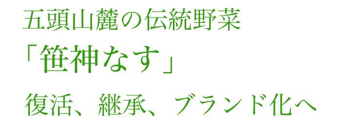 伝統野菜笹神なす 復活、継承、ブランド化へ