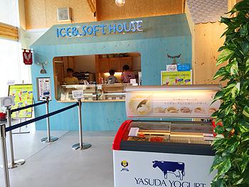 アイス&ソフトクリーム
